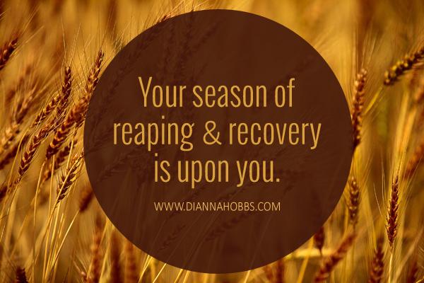 Recovery-season copy
